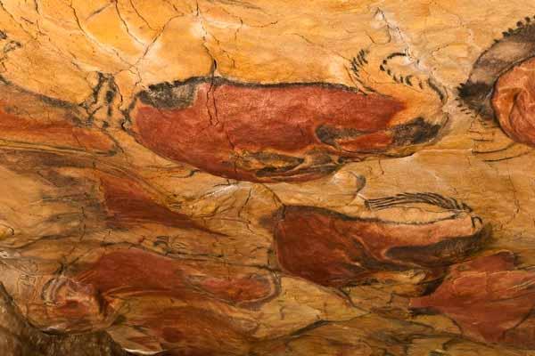 Grotta di Altamira, Spagna - Immagine: Wikipedia